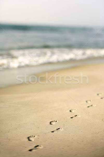Footprints in sand. Stock photo © iofoto