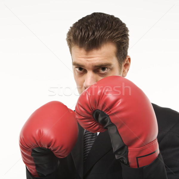 Businessman boxing. Stock photo © iofoto