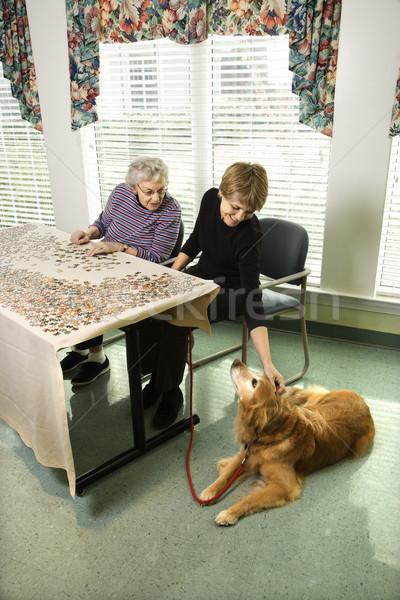 Foto stock: Duas · mulheres · cão · mulher · animais · de · estimação