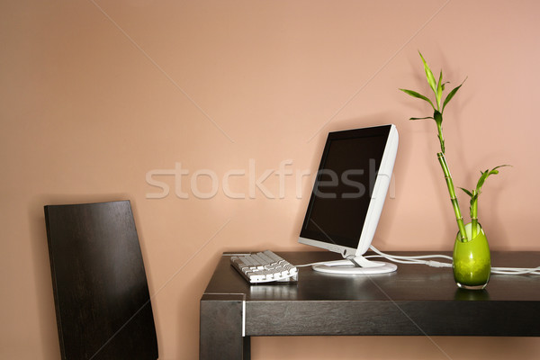Computer on Table with Bamboo Plant Stock photo © iofoto