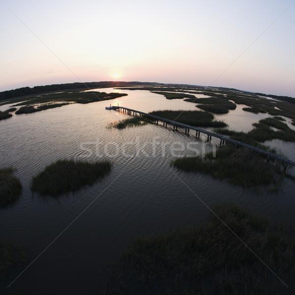 Coastal wetland with pier. Stock photo © iofoto