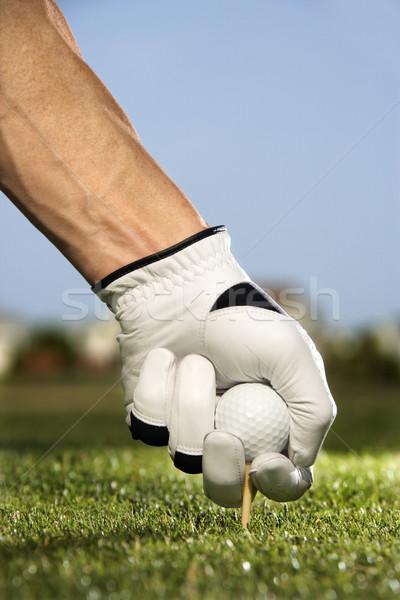 Сток-фото: гольфист · мяча · мужчины · мяч · для · гольфа · землю · вертикальный