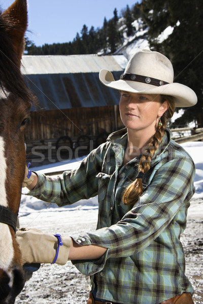 Attractive Young Woman Petting Horse Stock photo © iofoto