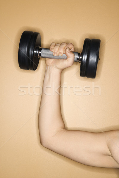 Woman lifting hand weight. Stock photo © iofoto