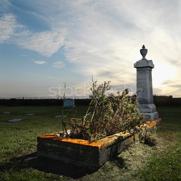 Foto stock: Rural · cemitério · plantas · paisagem · cor · grave