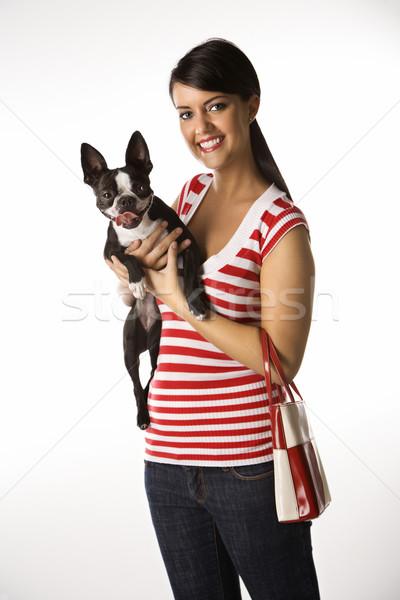 Woman holding Boston Terrier dog. Stock photo © iofoto