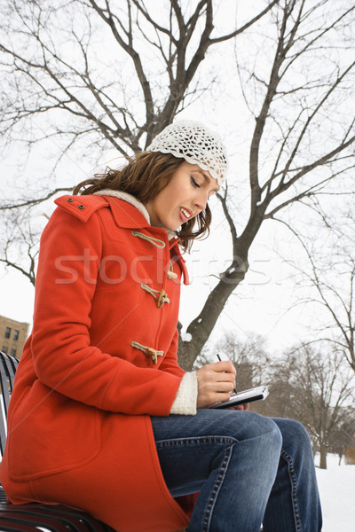Woman using PDA. Stock photo © iofoto