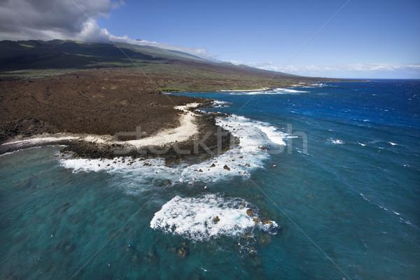 Kust lava rotsen antenne oceaan Hawaii Stockfoto © iofoto