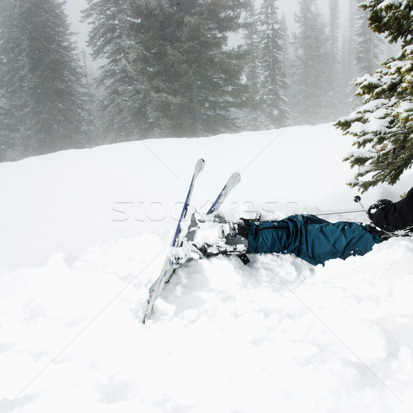 Kayak kaza kar ağaç kaza sis Stok fotoğraf © iofoto