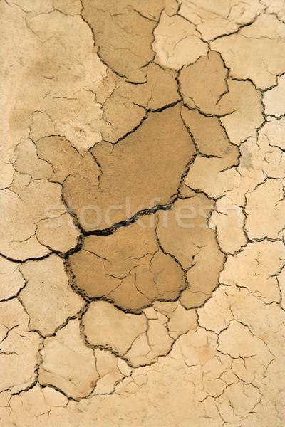 Gedroogd omhoog gebarsten vuil drogen Stockfoto © iofoto