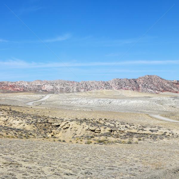Stock photo: Desert, Cottonwood Canyon.