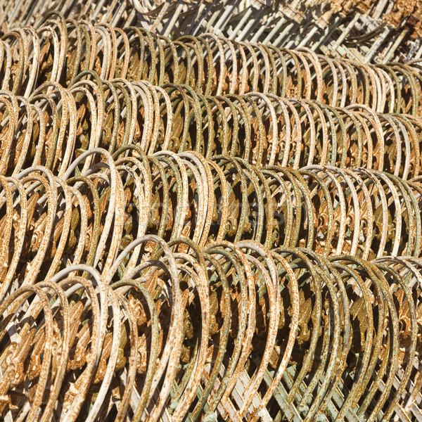 Ogrodzenie wraz metal rząd tekstury Zdjęcia stock © iofoto
