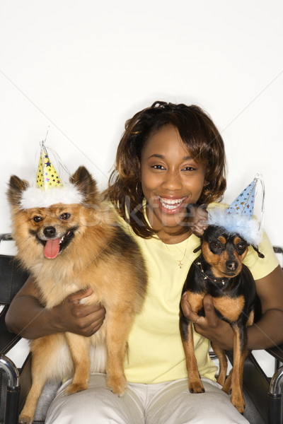 Woman holding dogs in party hats. Stock photo © iofoto