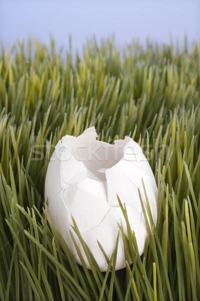 Broken white egg in grass. Stock photo © iofoto
