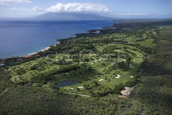 Foto d'archivio: Campo · da · golf · Hawaii · acqua · panorama