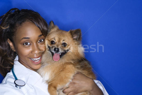 Woman veterinarian holding brown dog. Stock photo © iofoto