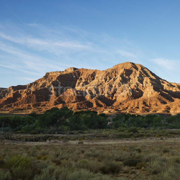 Zion National Park, Utah. Stock photo © iofoto