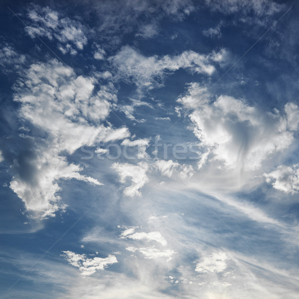 Blue sky with clouds. Stock photo © iofoto