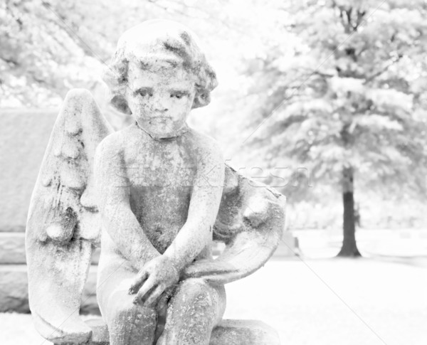 Cherub statue in graveyard Stock photo © iofoto
