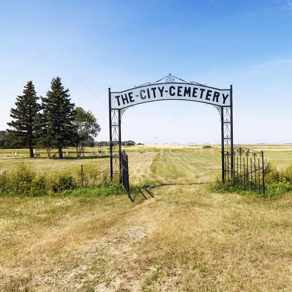 Giriş Mezarlığın kırsal alan dekoratif demir Stok fotoğraf © iofoto
