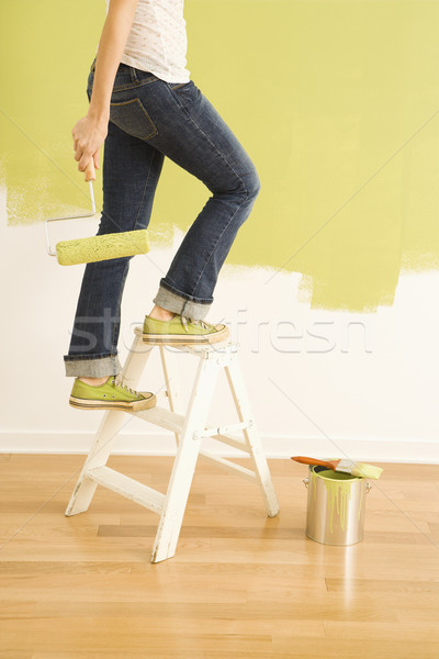 Female painter on ladder. Stock photo © iofoto