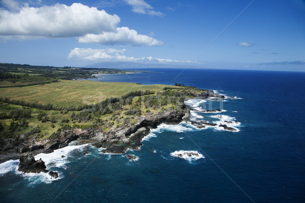 Hawaii coastline. Stock photo © iofoto