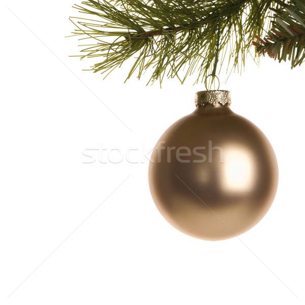 Karácsony dísz csendélet arany akasztás fenyőfa Stock fotó © iofoto