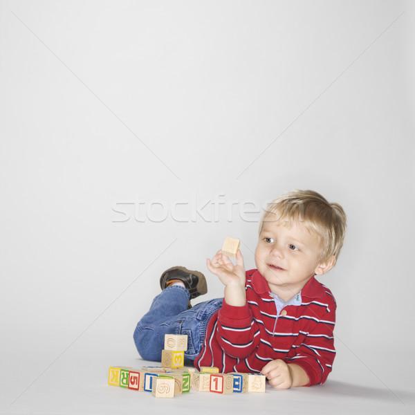 Fiú játszik kockák stúdió portré kaukázusi Stock fotó © iofoto