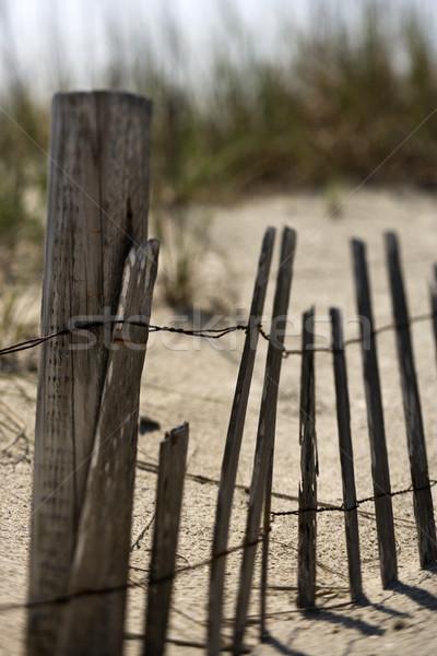 フェンス 砂丘 風化した はげ 頭 島 ストックフォト © iofoto