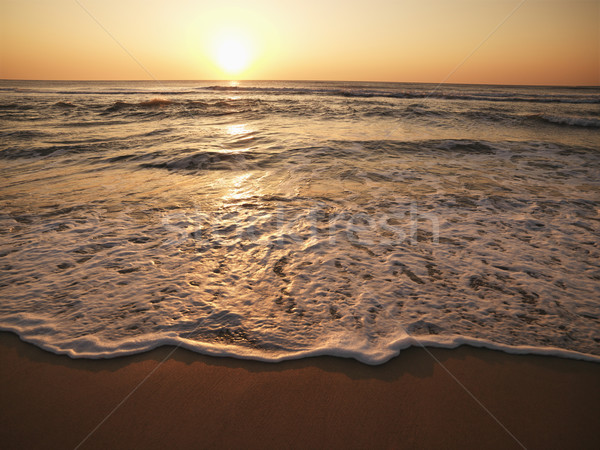 Sunset at beach. Stock photo © iofoto