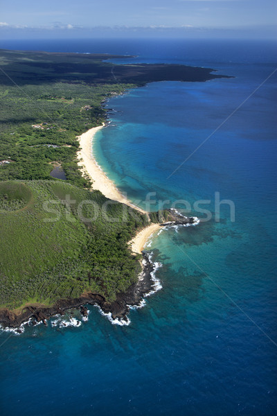 Strand Hawaii antenne water landschap oceaan Stockfoto © iofoto