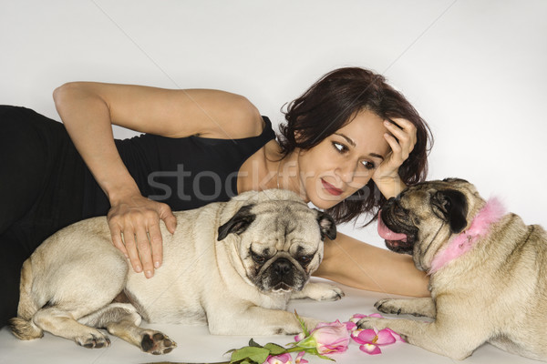 Woman with two Pug dogs. Stock photo © iofoto