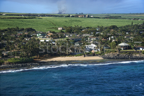 Houses on Maui coast. Stock photo © iofoto