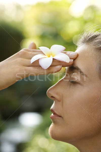 Woman holding plumeria flower. Stock photo © iofoto