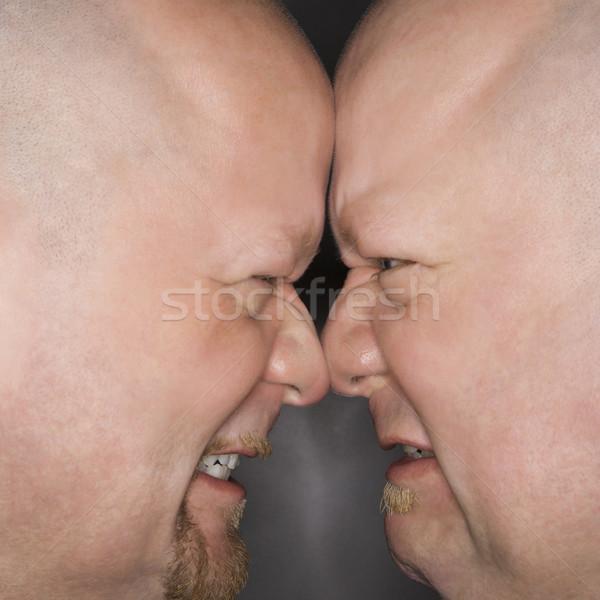 Férfiak szemtől szembe közelkép kaukázusi kopasz felnőtt Stock fotó © iofoto