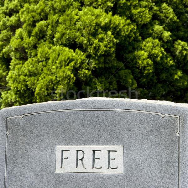 Mezar taşı kelime ücretsiz ağaçlar ağaç arka plan Stok fotoğraf © iofoto