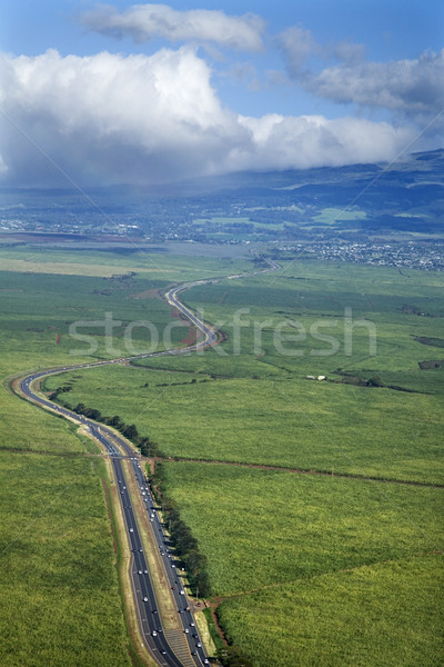 Road through cropland. Stock photo © iofoto