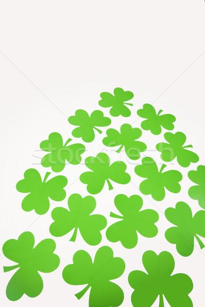 Verde papel grupo hoja trébol color Foto stock © iofoto