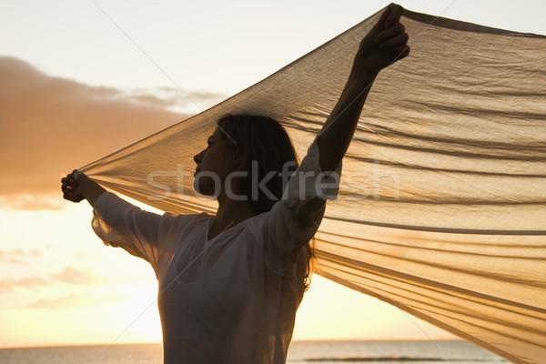 Kadın esinti çekici kafkas kumaş Stok fotoğraf © iofoto