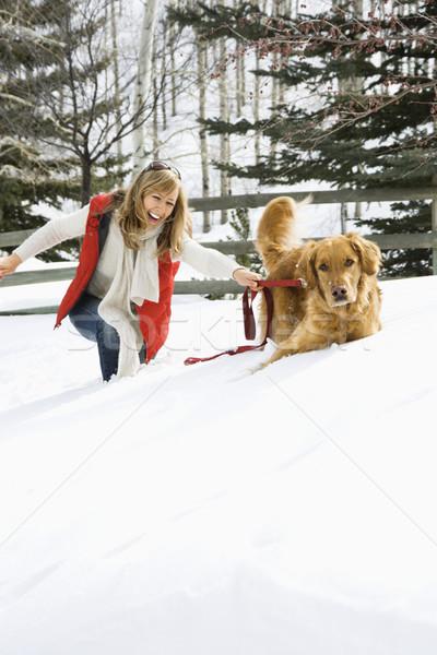 Woman playing with dog. Stock photo © iofoto