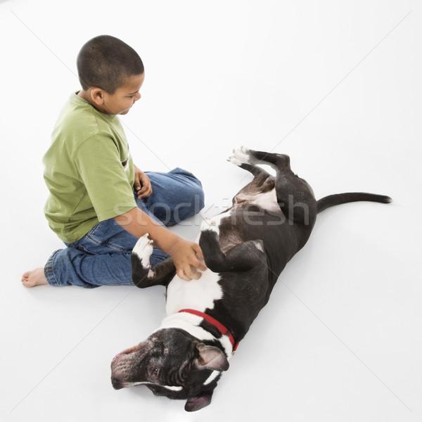 Chłopca domowych psa młodych hiszpańskie czarno białe Zdjęcia stock © iofoto