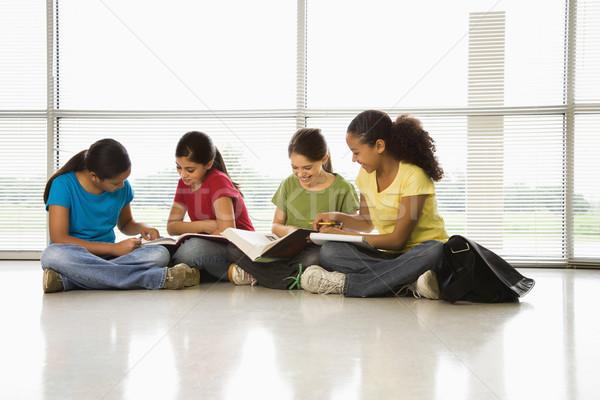 Girls doing homework. Stock photo © iofoto