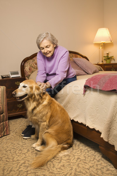 Mature woman with dog. Stock photo © iofoto