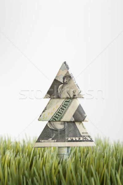 Origami árvore dinheiro vinte dólar Foto stock © iofoto