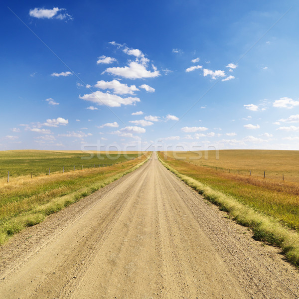 Country Dirt Road Between Fields Stock photo © iofoto