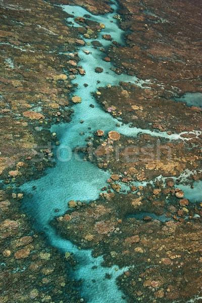 Trópusi korallzátony légifelvétel víz textúra tenger Stock fotó © iofoto