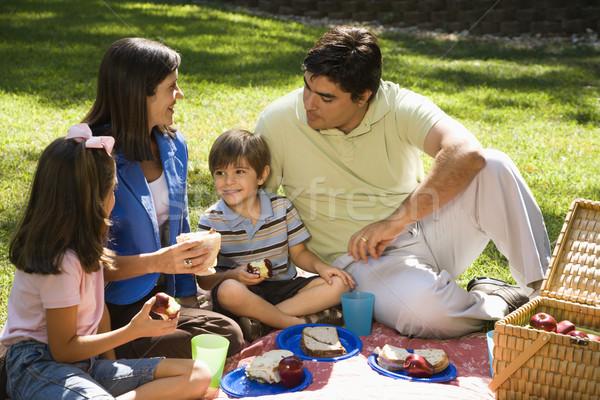 Familie picknick latino park vrouw glimlach Stockfoto © iofoto