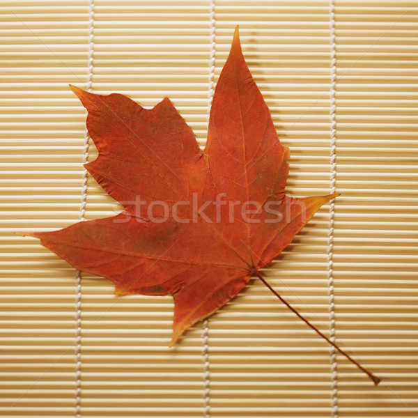 Foto stock: Maple · leaf · bambu · vermelho · raio · natureza