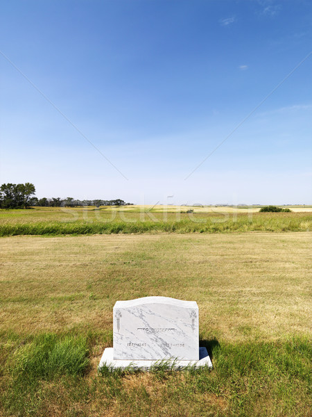 Headstone in field. Stock photo © iofoto