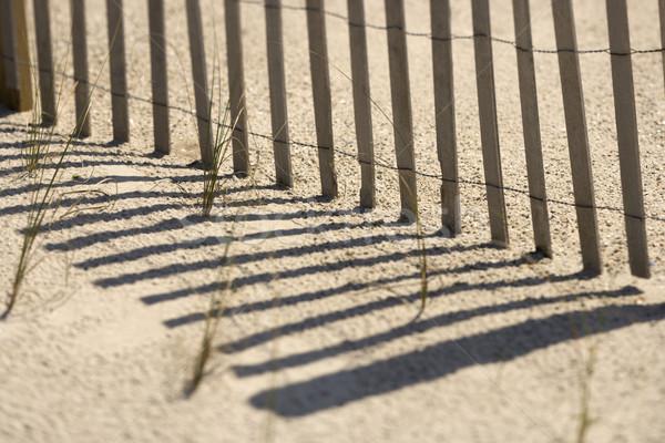 Clôture chauve tête île ombres Photo stock © iofoto